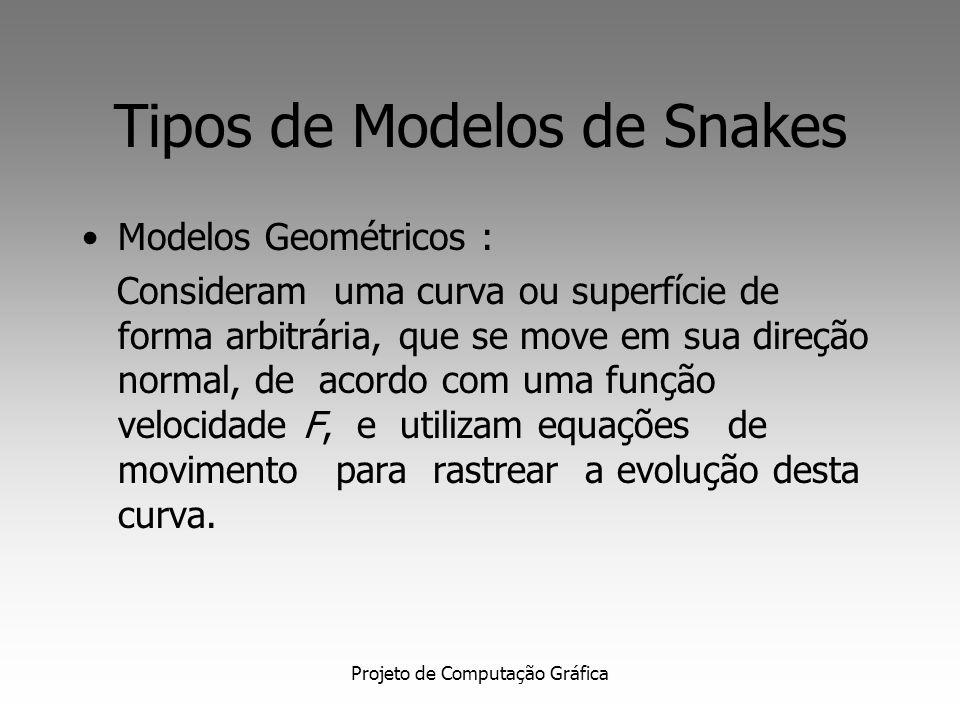 Tipos de Modelos de Snakes