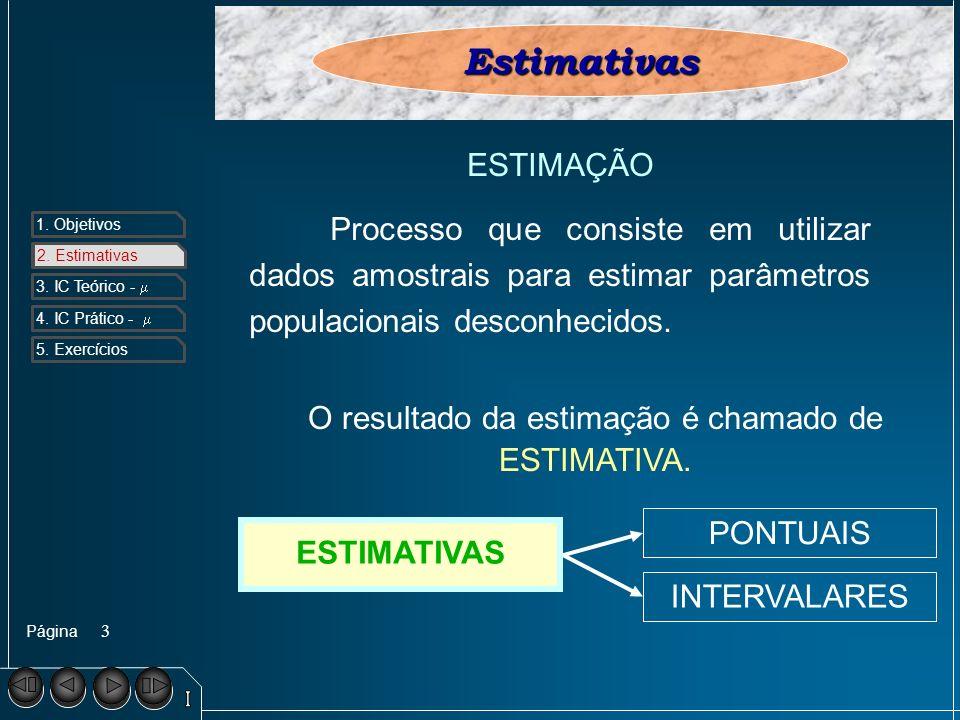 O resultado da estimação é chamado de ESTIMATIVA.