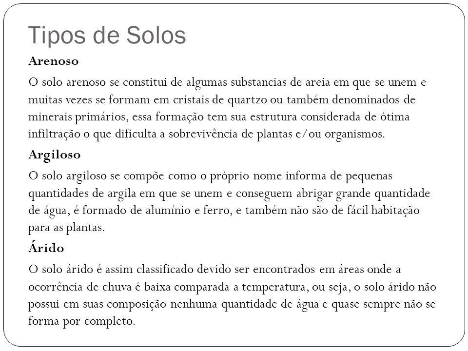 Tipos de Solos Arenoso.