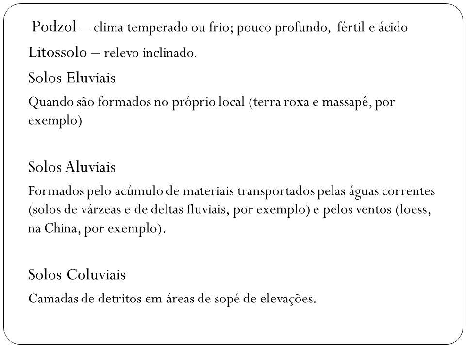 Podzol – clima temperado ou frio; pouco profundo, fértil e ácido