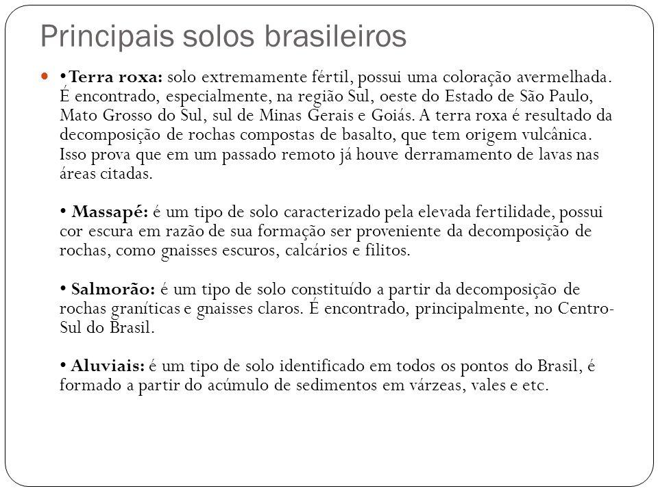 Principais solos brasileiros