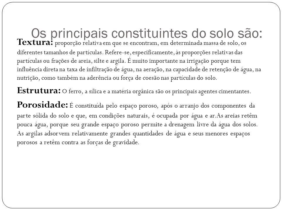 Os principais constituintes do solo são: