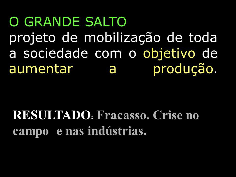 O GRANDE SALTO projeto de mobilização de toda a sociedade com o objetivo de aumentar a produção.