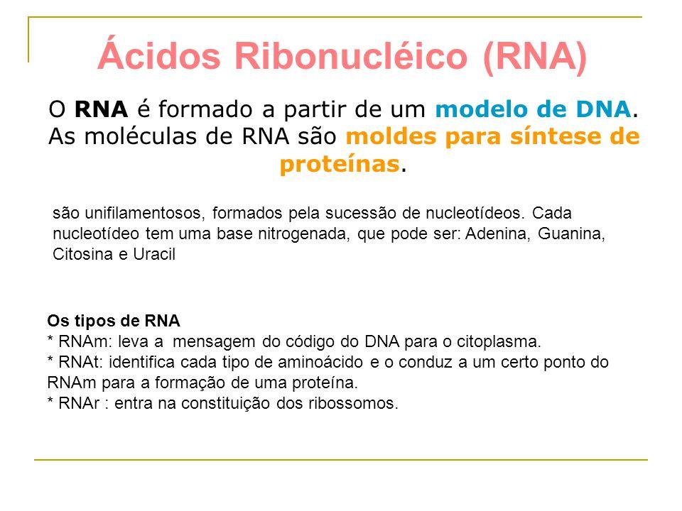 Ácidos Ribonucléico (RNA)