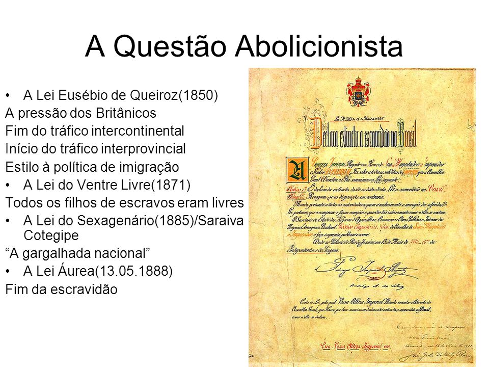 A Questão Abolicionista