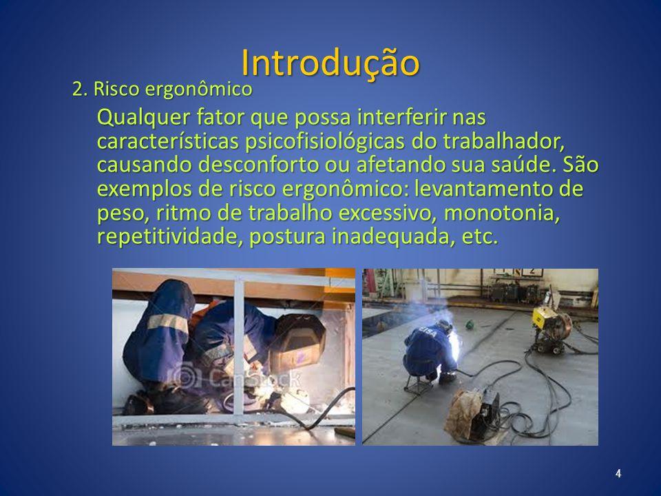 Introdução 2. Risco ergonômico.