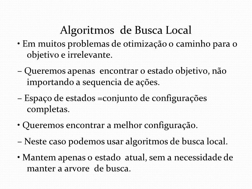 Algoritmos de Busca Local
