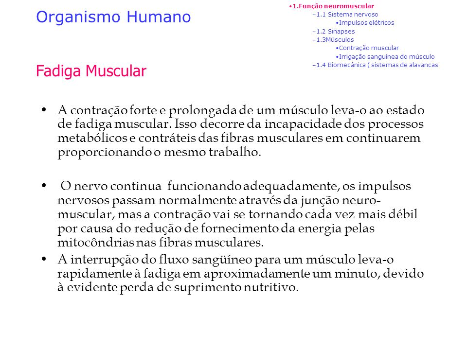 Organismo Humano Fadiga Muscular