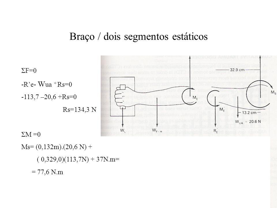 Braço / dois segmentos estáticos