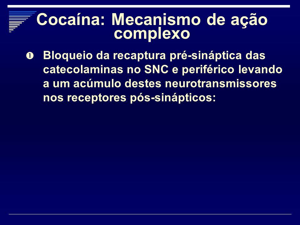 Cocaína: Mecanismo de ação complexo