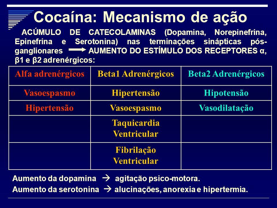 Cocaína: Mecanismo de ação