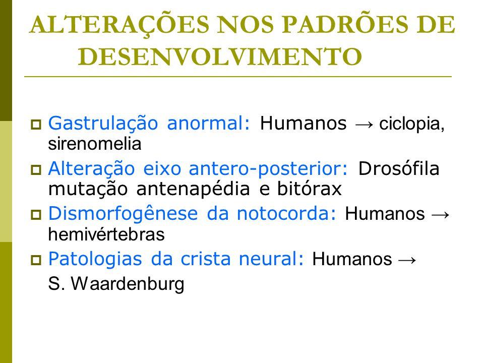ALTERAÇÕES NOS PADRÕES DE DESENVOLVIMENTO