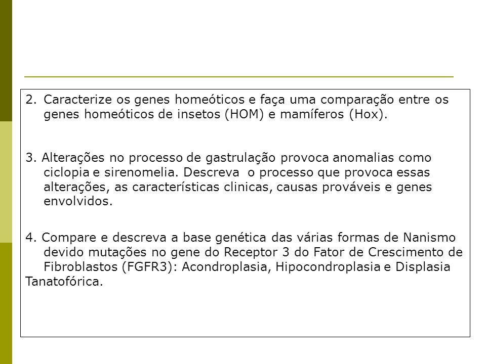 Caracterize os genes homeóticos e faça uma comparação entre os genes homeóticos de insetos (HOM) e mamíferos (Hox).