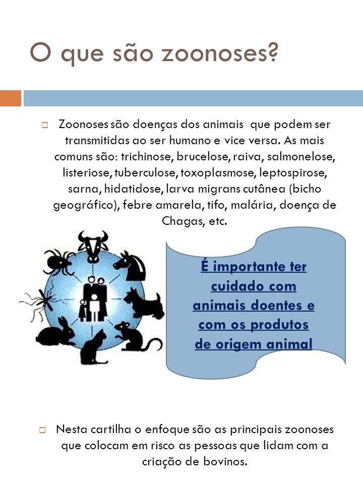 O que são zoonoses