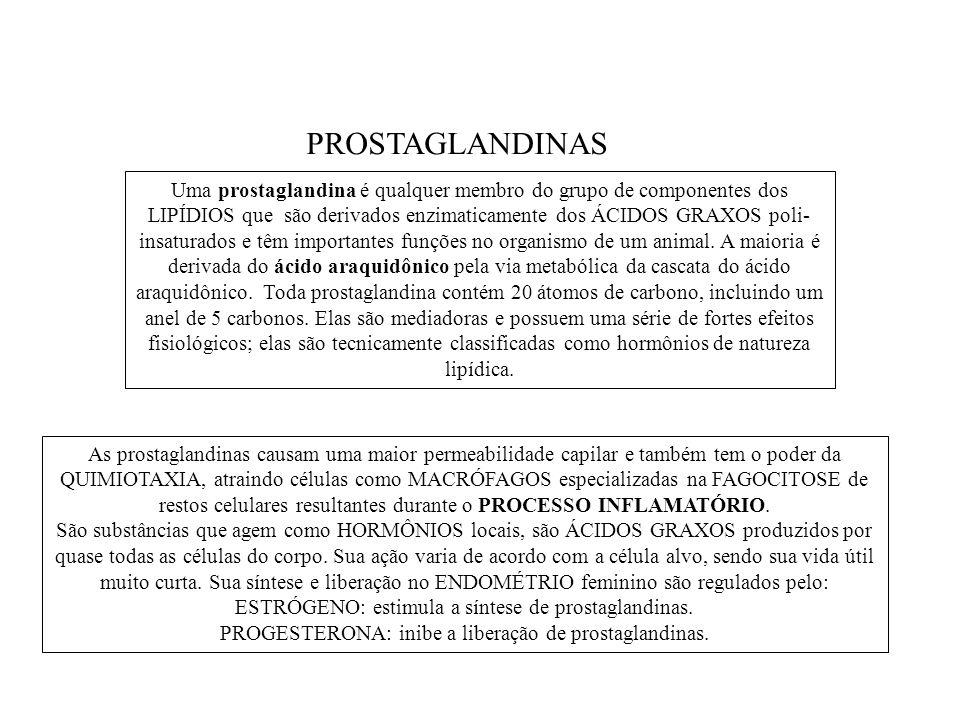 PROSTAGLANDINAS