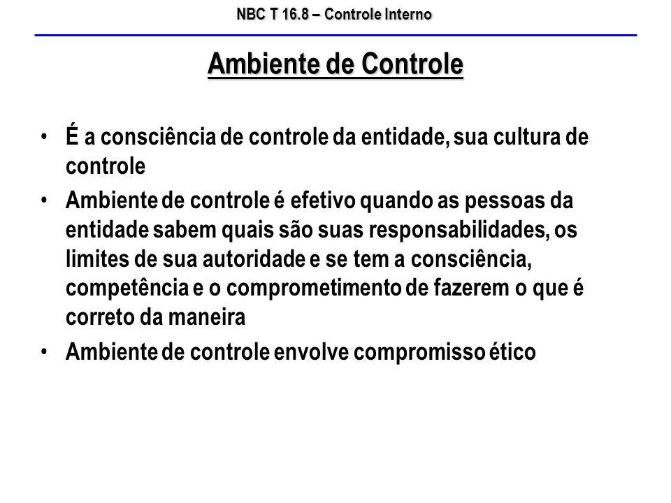 Ambiente de Controle É a consciência de controle da entidade, sua cultura de controle.