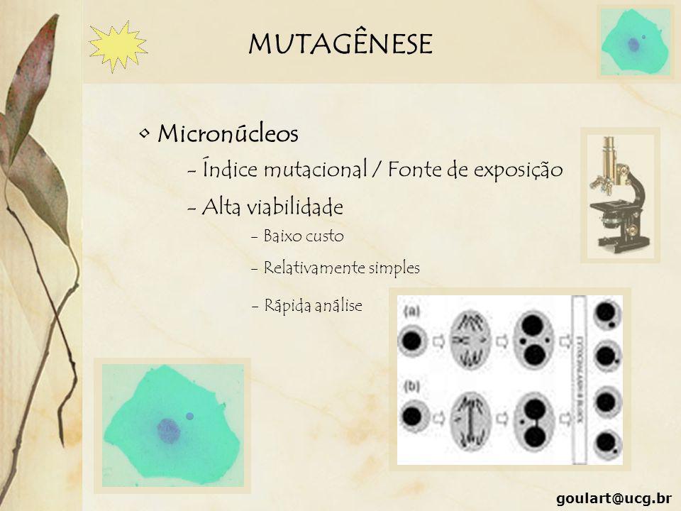 MUTAGÊNESE Micronúcleos - Índice mutacional / Fonte de exposição