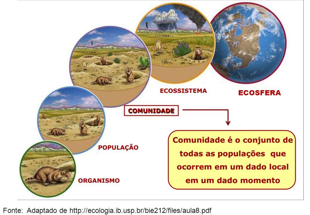 ECOSFERA Fonte: Adaptado de http://ecologia.ib.usp.br/bie212/files/aula8.pdf