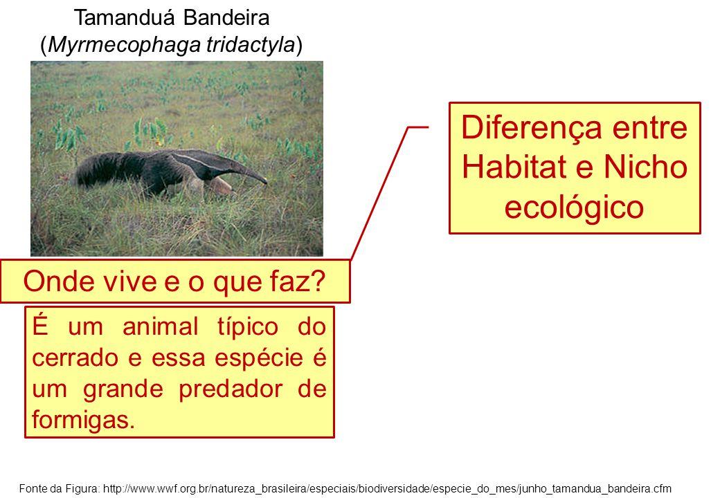 Diferença entre Habitat e Nicho ecológico