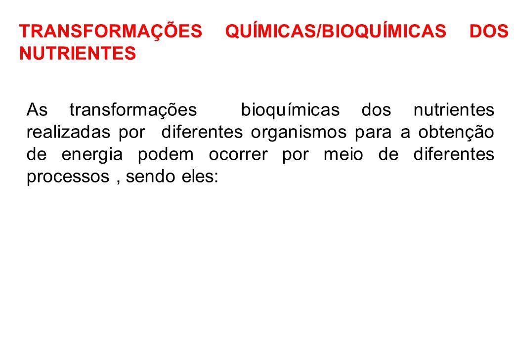 TRANSFORMAÇÕES QUÍMICAS/BIOQUÍMICAS DOS NUTRIENTES