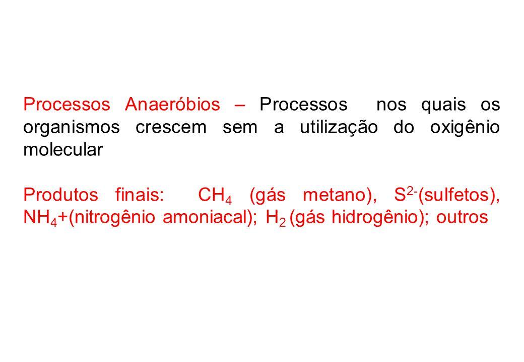 Processos Anaeróbios – Processos nos quais os organismos crescem sem a utilização do oxigênio molecular
