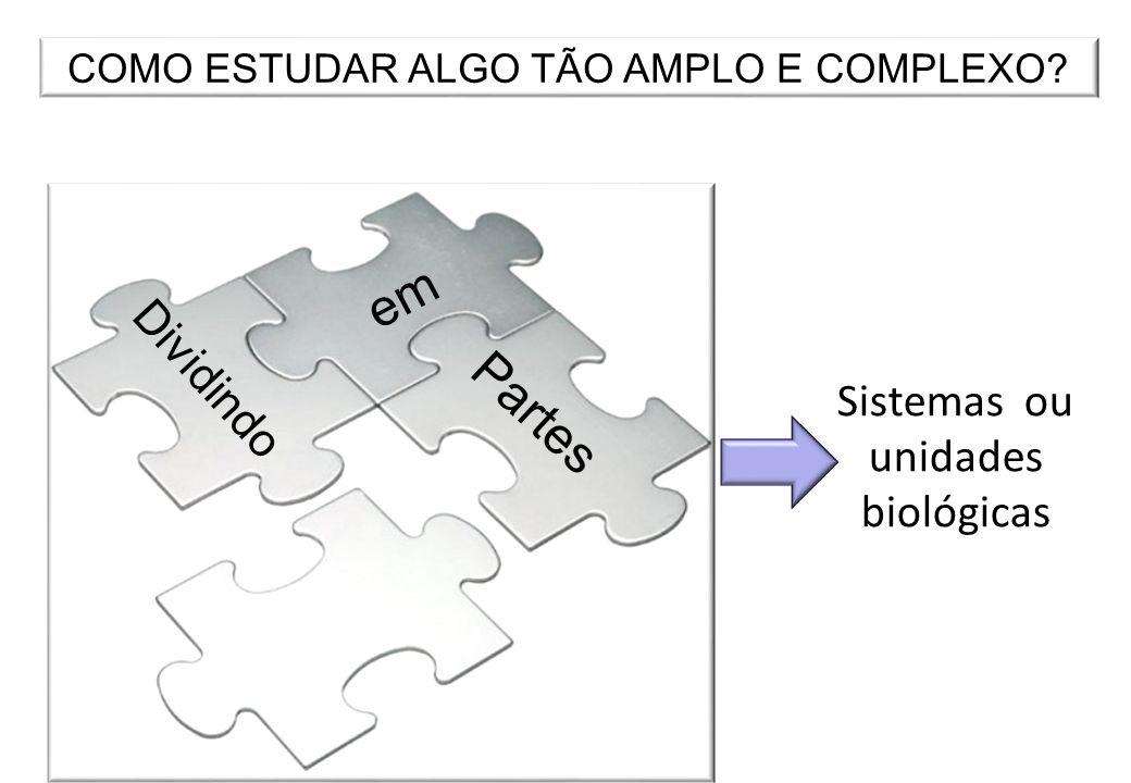 em Partes Dividindo Sistemas ou unidades biológicas