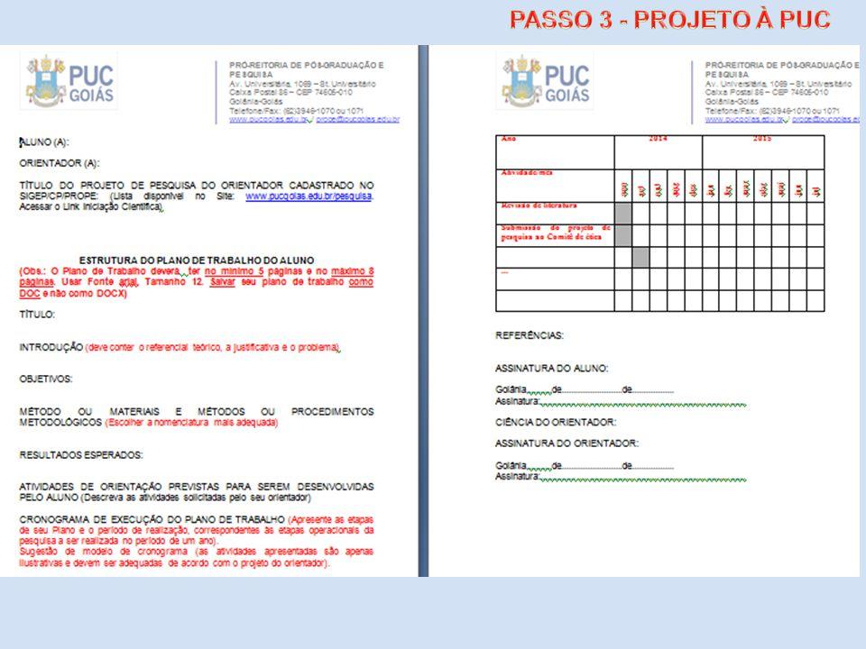 PASSO 3 - PROJETO À PUC