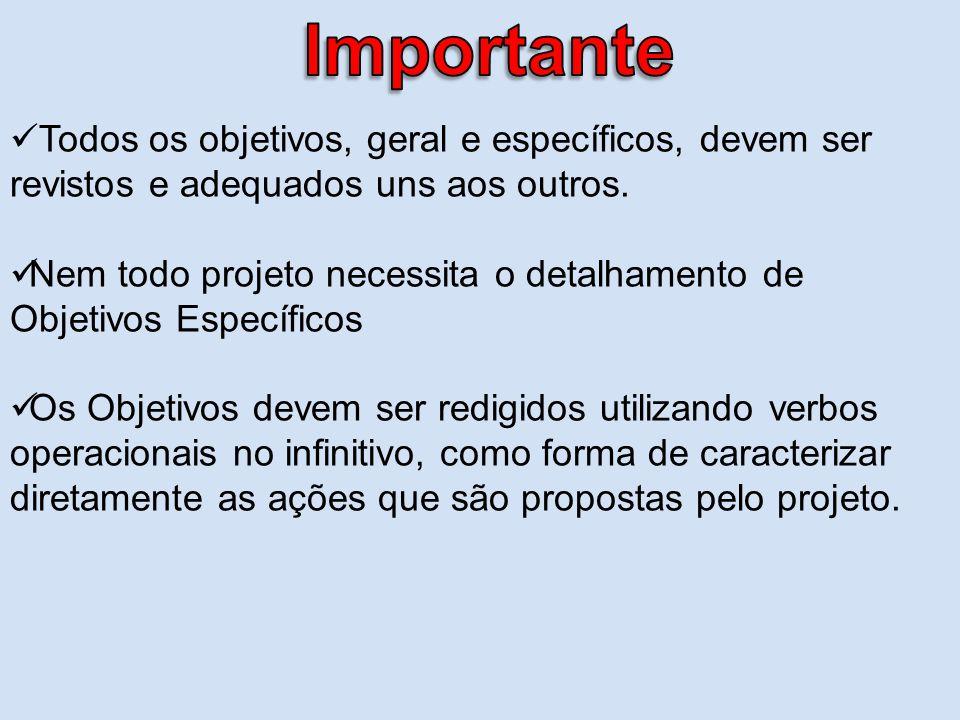 Importante Todos os objetivos, geral e específicos, devem ser revistos e adequados uns aos outros.