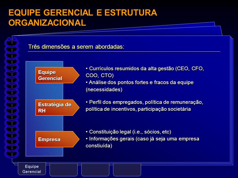 EQUIPE GERENCIAL E ESTRUTURA ORGANIZACIONAL