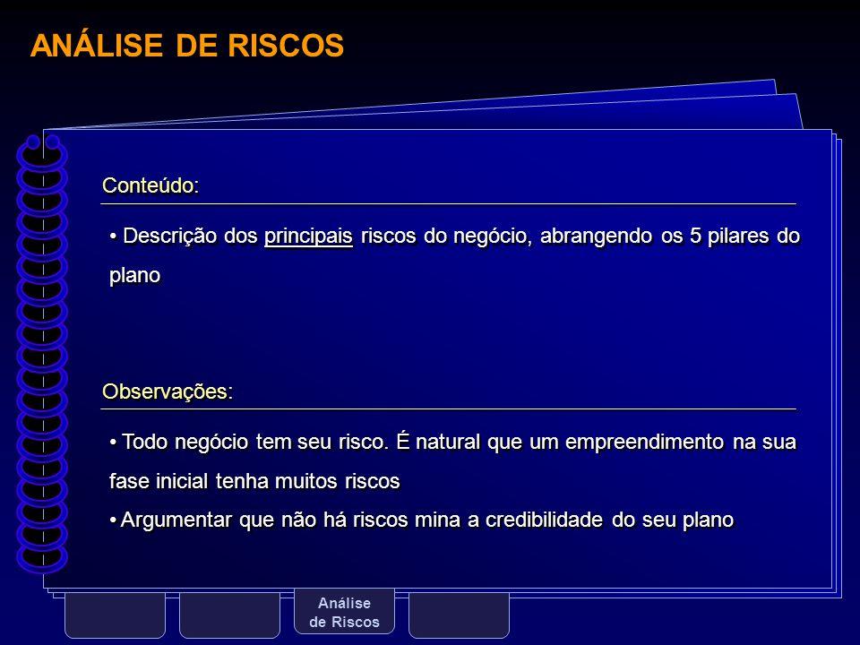 ANÁLISE DE RISCOS Conteúdo: