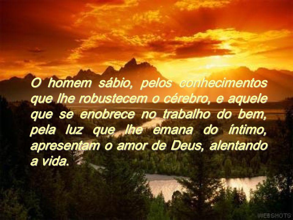 O homem sábio, pelos conhecimentos que lhe robustecem o cérebro, e aquele que se enobrece no trabalho do bem, pela luz que lhe emana do íntimo, apresentam o amor de Deus, alentando a vida.