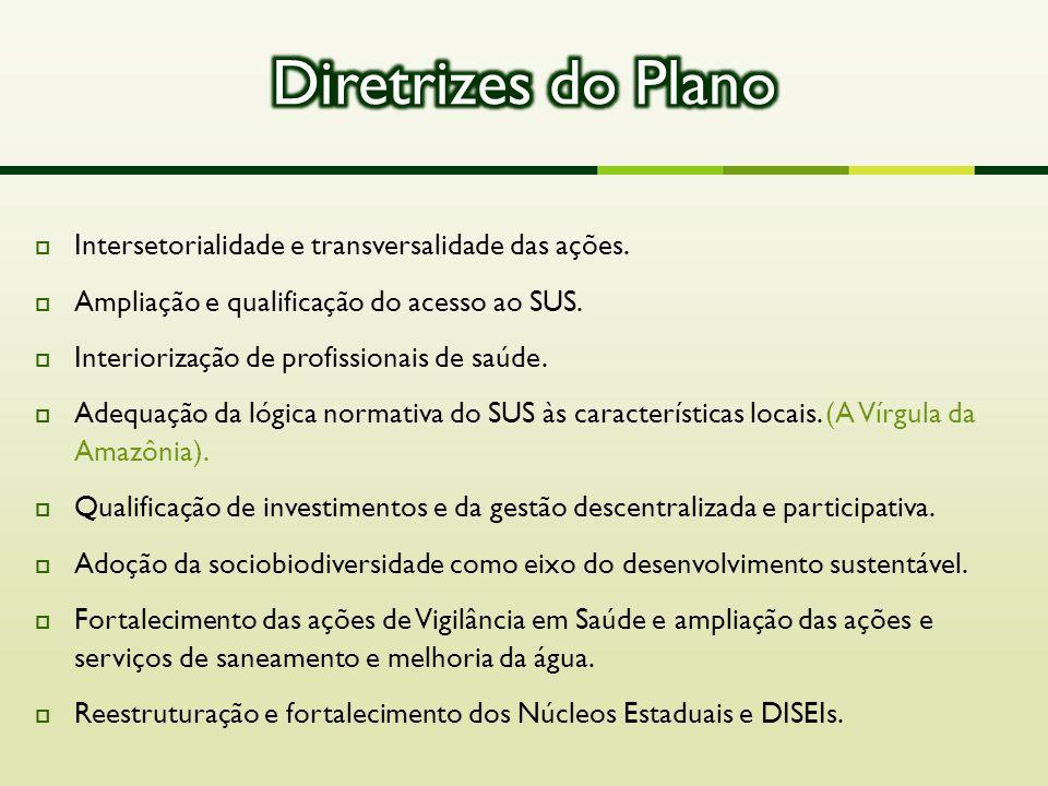 Diretrizes do Plano Intersetorialidade e transversalidade das ações.