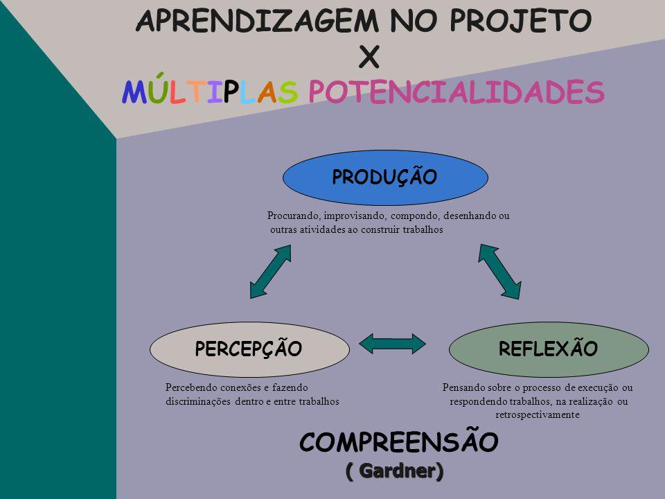 APRENDIZAGEM NO PROJETO X MÚLTIPLAS POTENCIALIDADES