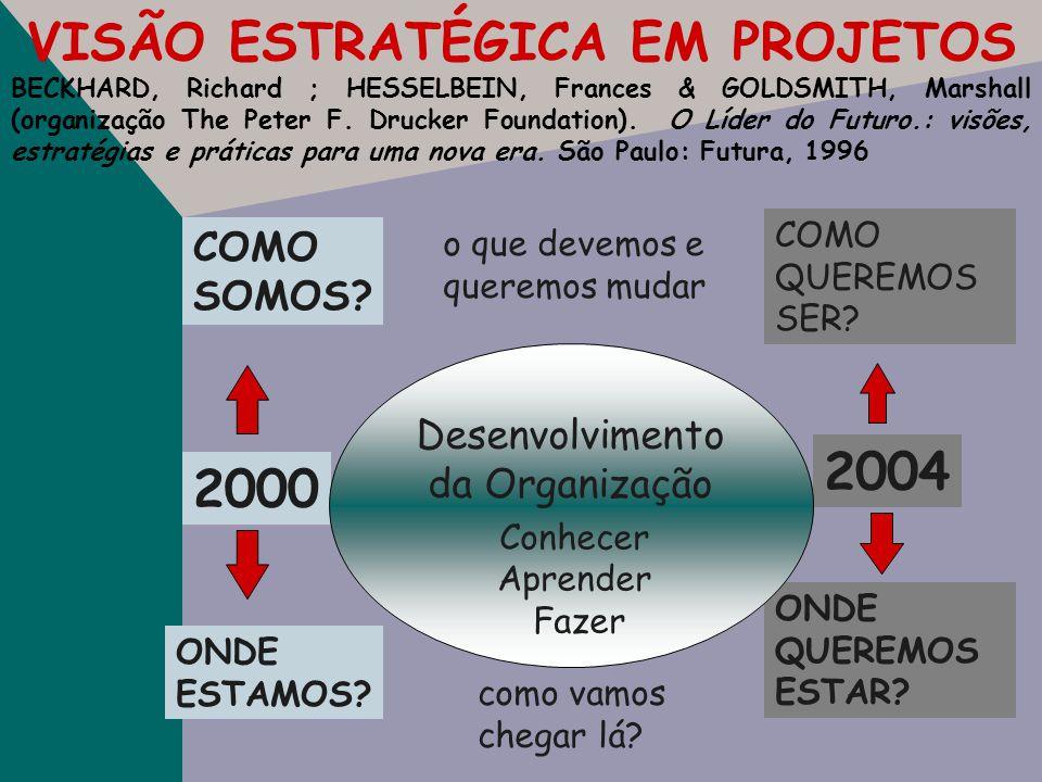 VISÃO ESTRATÉGICA EM PROJETOS