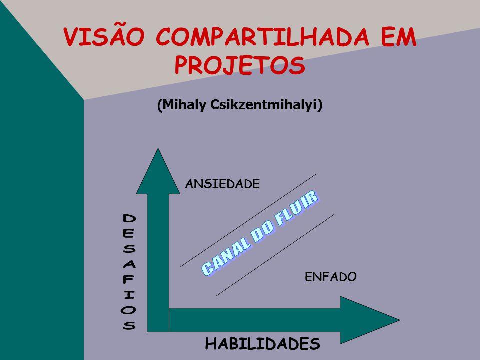 VISÃO COMPARTILHADA EM PROJETOS (Mihaly Csikzentmihalyi)