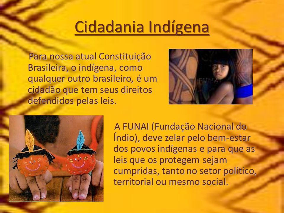 Cidadania Indígena