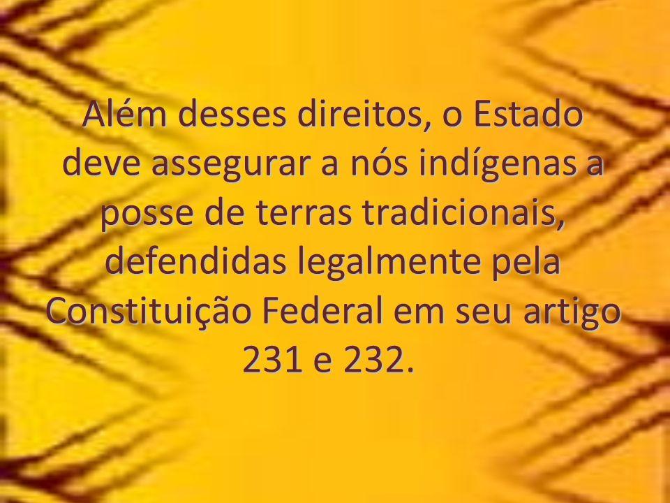 Além desses direitos, o Estado deve assegurar a nós indígenas a posse de terras tradicionais, defendidas legalmente pela Constituição Federal em seu artigo 231 e 232.
