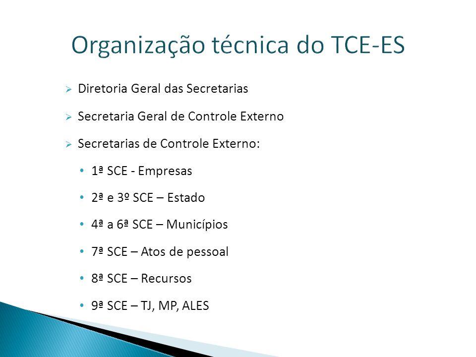 Organização técnica do TCE-ES