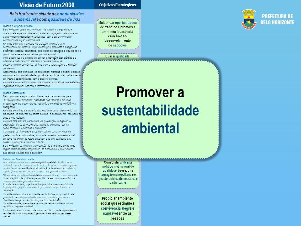Promover a sustentabilidade ambiental