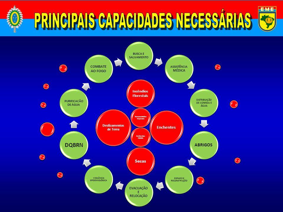 PRINCIPAIS CAPACIDADES NECESSÁRIAS