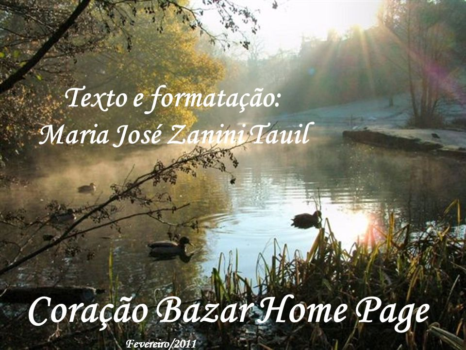 Maria José Zanini Tauil
