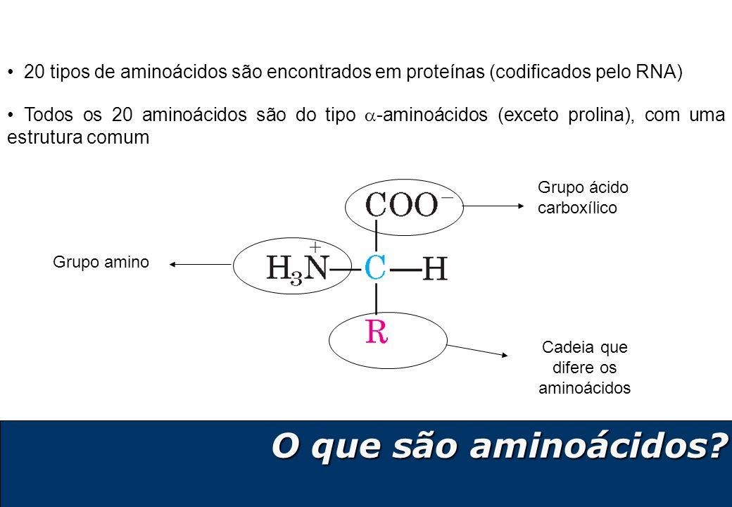 Cadeia que difere os aminoácidos