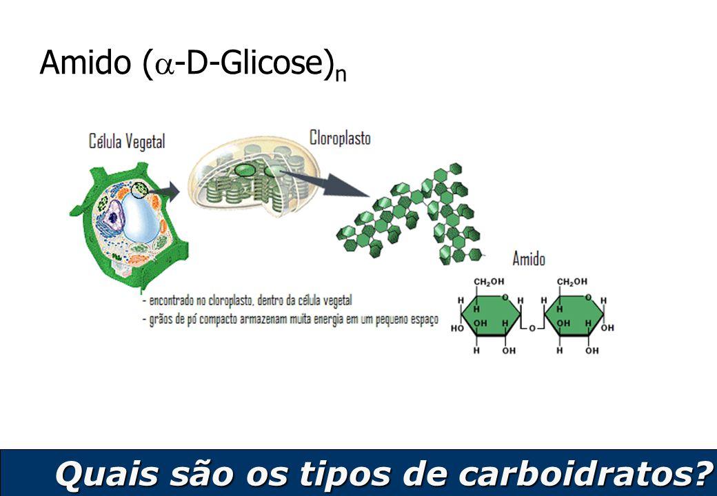 Amido (-D-Glicose)n Quais são os tipos de carboidratos