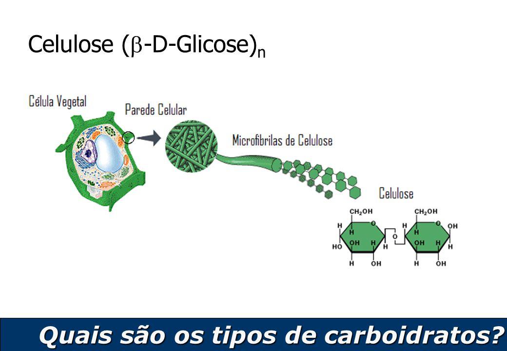 Celulose (-D-Glicose)n