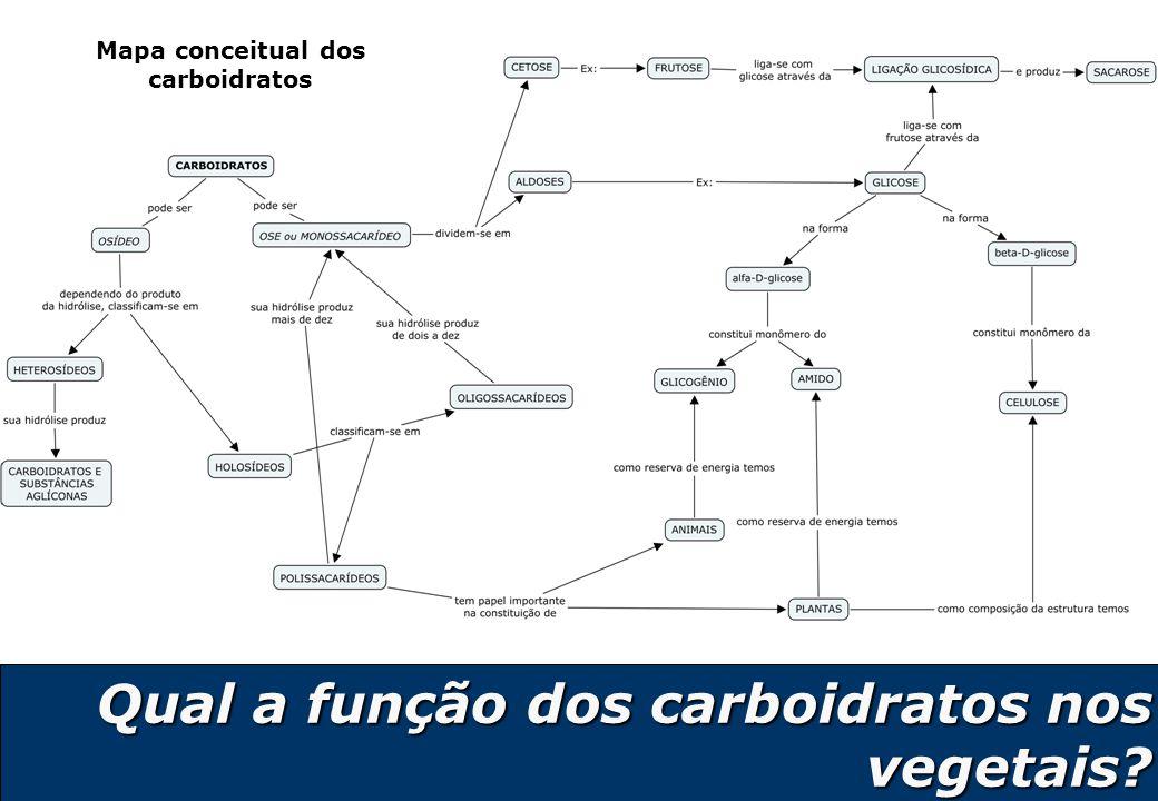 Mapa conceitual dos carboidratos