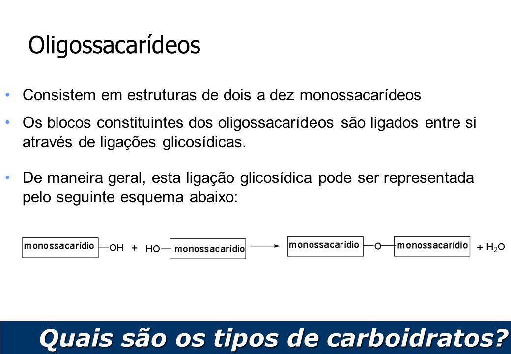 Quais são os tipos de carboidratos