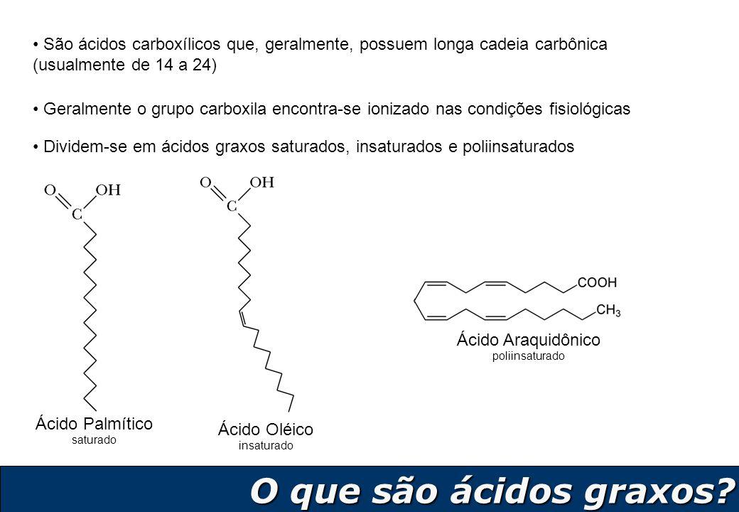 São ácidos carboxílicos que, geralmente, possuem longa cadeia carbônica (usualmente de 14 a 24)