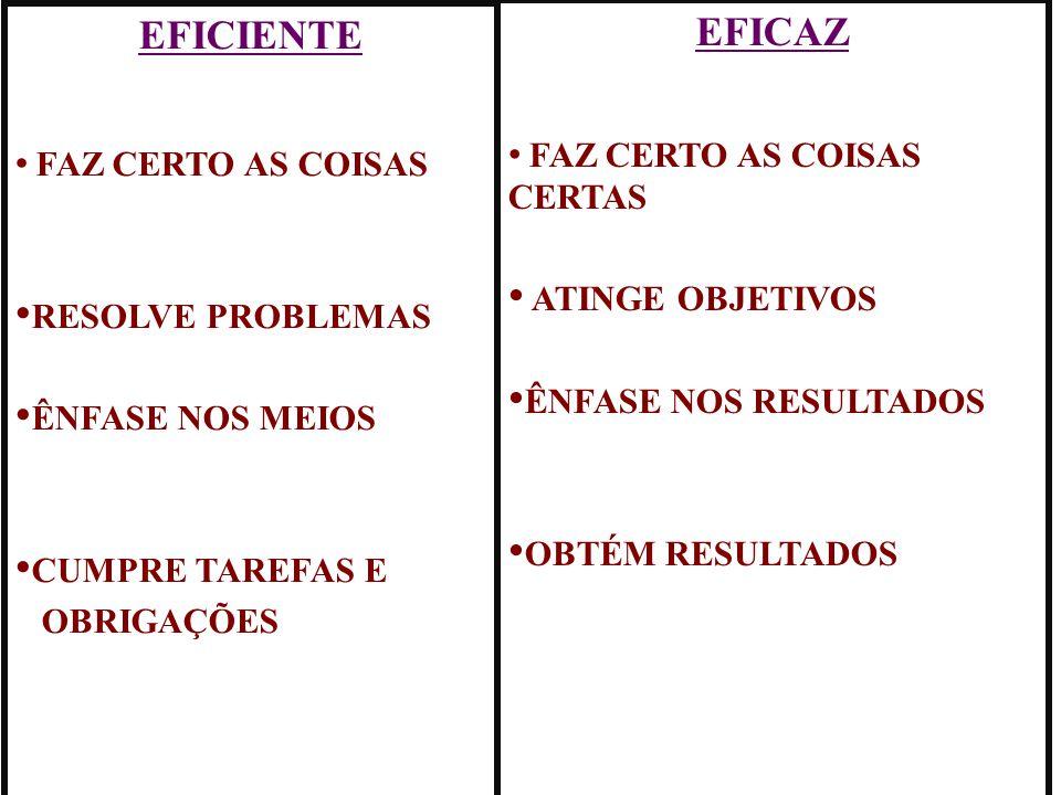 EFICIENTE EFICAZ ATINGE OBJETIVOS RESOLVE PROBLEMAS
