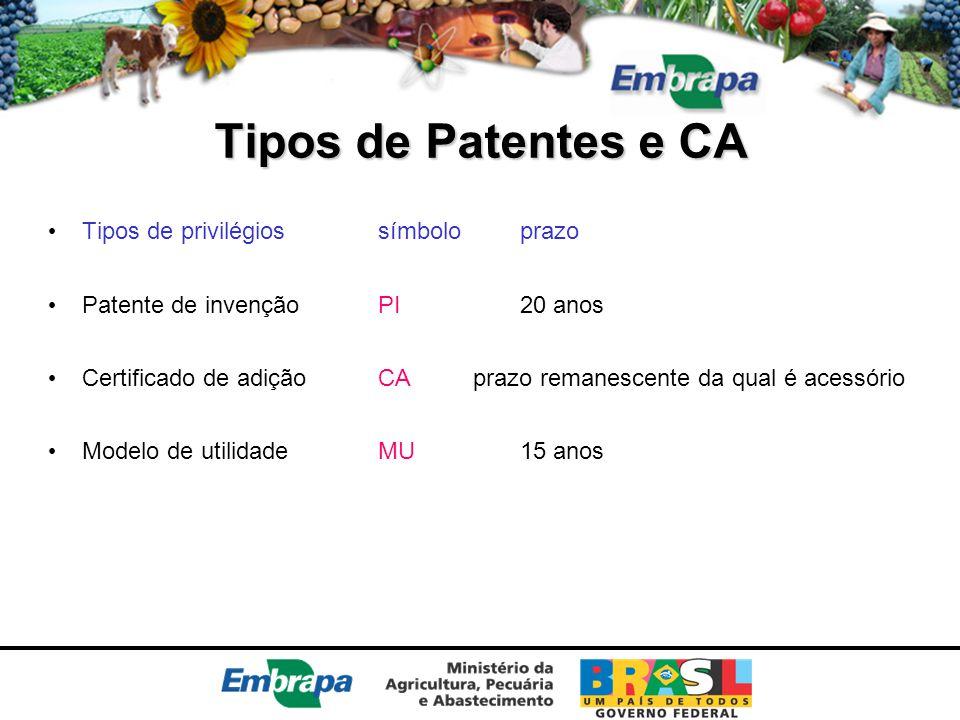 Tipos de Patentes e CA Tipos de privilégios símbolo prazo