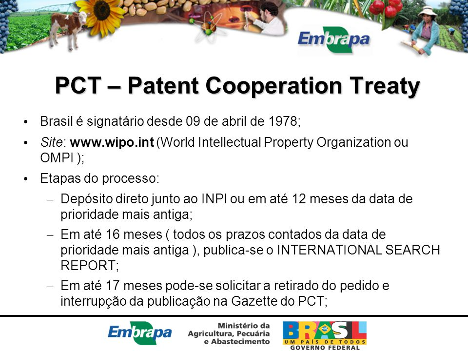 PCT – Patent Cooperation Treaty
